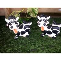 Vaca mini UN